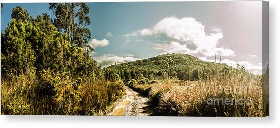 Summer Scene Canvas Print - Outback Country Road Panorama by Jorgo Photography - Wall Art Gallery