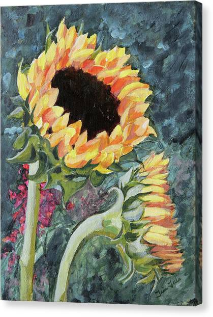 Outdoor Sunflowers Canvas Print