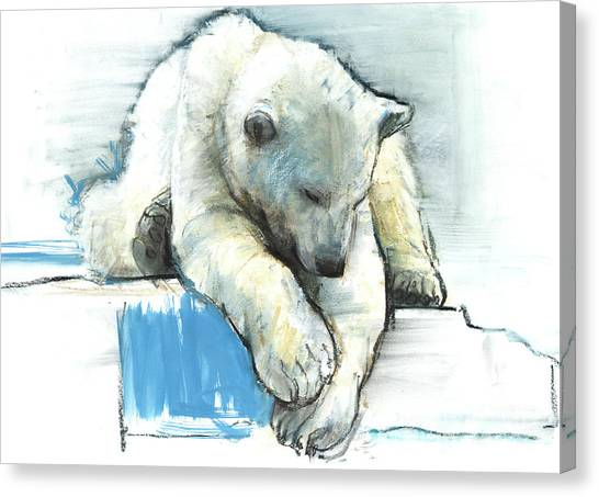 Bear Claws Canvas Print - Over The Edge by Mark Adlington