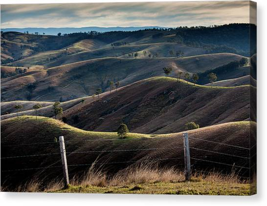 Wine Country Canvas Print - Over The Back Fence by Az Jackson