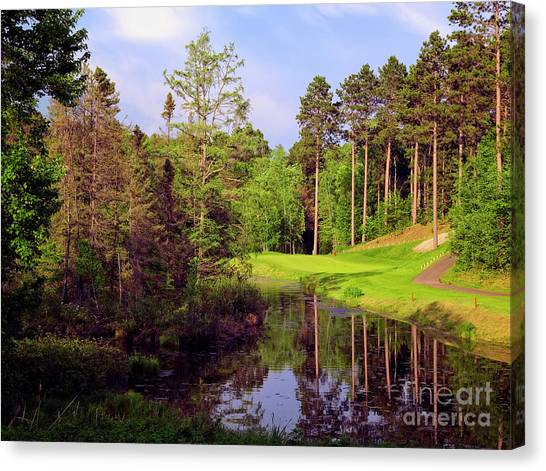 Canvas Print featuring the photograph Over The Pond by Scott Kemper