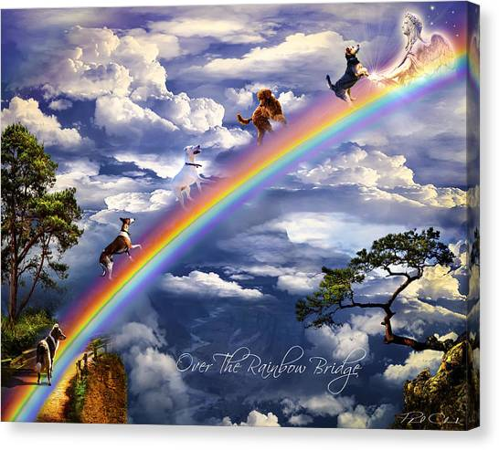 Over The Rainbow Bridge Canvas Print