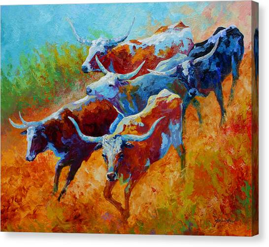 Longhorn Canvas Print - Over The Ridge - Longhorns by Marion Rose