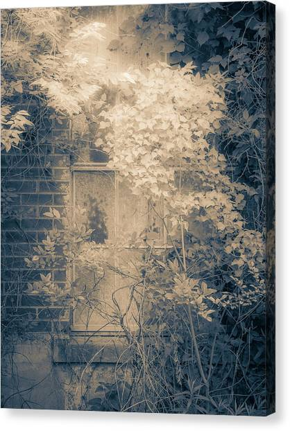 Overgrowth On Abandoned Pumping Station Canvas Print
