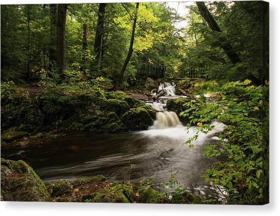 Overlooked Falls Canvas Print