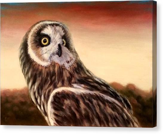 Owl At Sunset Canvas Print