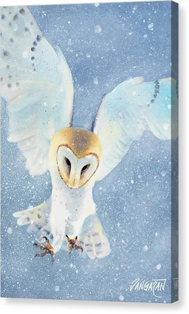 Owl Detail Canvas Print