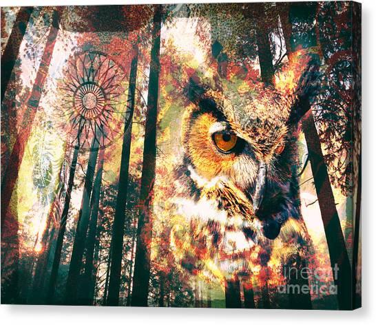 Owl Medicine 2015 Canvas Print