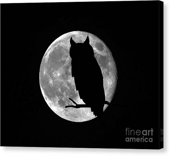 Owl Moon Canvas Print