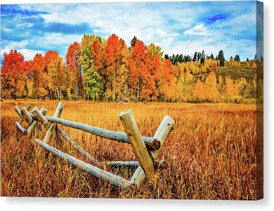 Oxbow Bend Fall Color Canvas Print