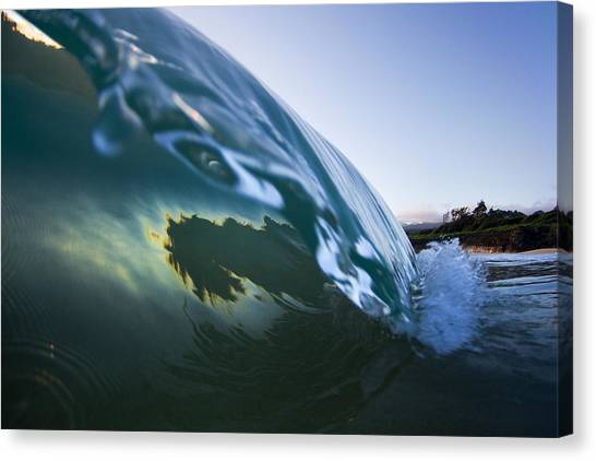 Oysters Canvas Print - Oyster Curl  -  Part 3 Of 3 by Sean Davey