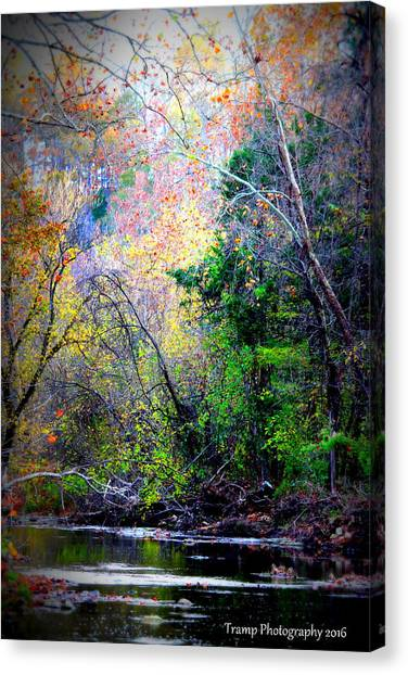 Ozarks Fall Canvas Print