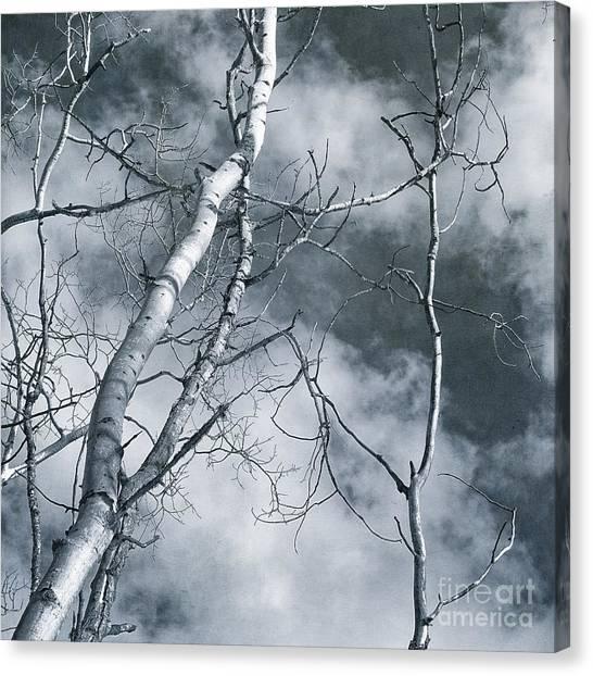 Tundras Canvas Print - Land Shapes 36 by Priska Wettstein