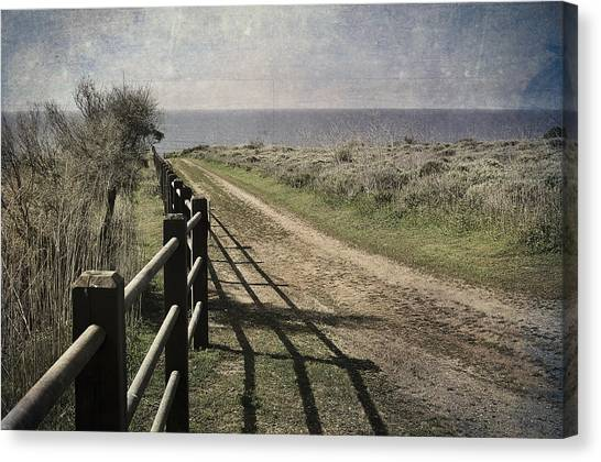 Pacific Path Canvas Print