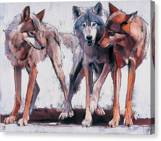 Wolves Canvas Print - Pack Leaders by Mark Adlington
