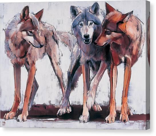 Wolf Canvas Print - Pack Leaders by Mark Adlington