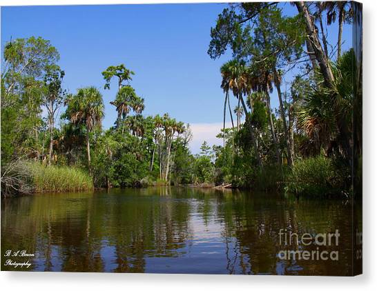 Paddling Otter Creek Canvas Print