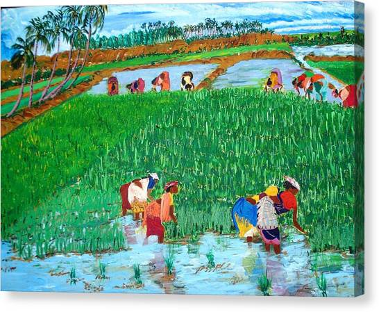 Paddy Planters Canvas Print by Narayan Iyer