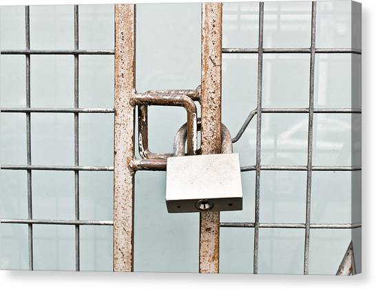 Chain Link Fence Canvas Print - Padlocked Gate by Tom Gowanlock