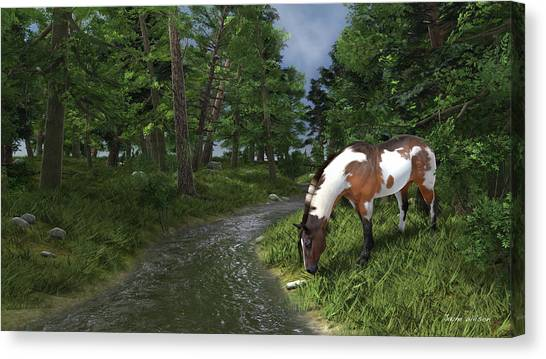 Paint Horse By The Forest Stream Canvas Print