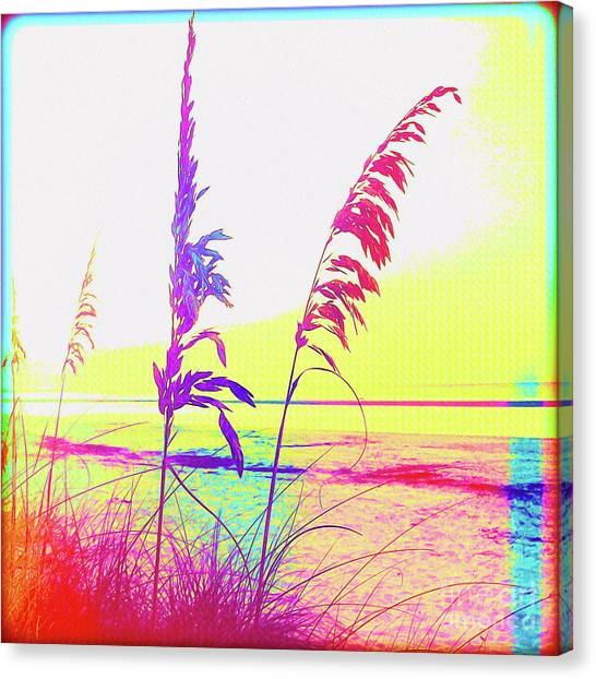 Island .oasis Canvas Print - Painted Before Day by Chris Andruskiewicz