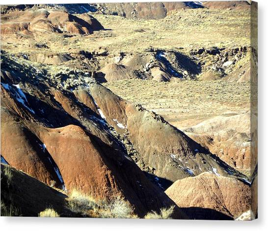 Painted Desert 11 Canvas Print by Patricia Bigelow