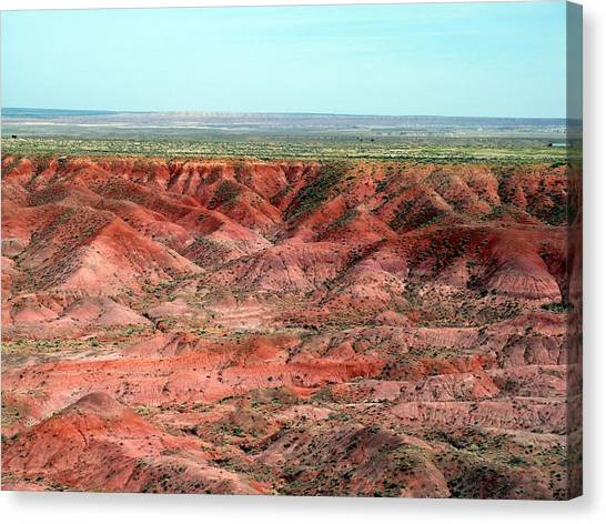 Painted Desert 3 Canvas Print by Jeanette Oberholtzer