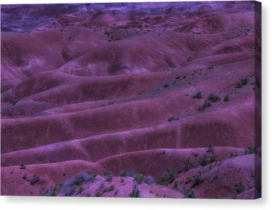 Petrified Forest Canvas Print - Painted Desert Azorina by Garry Gay