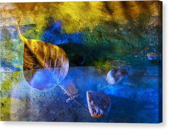 Painted Dreams Canvas Print