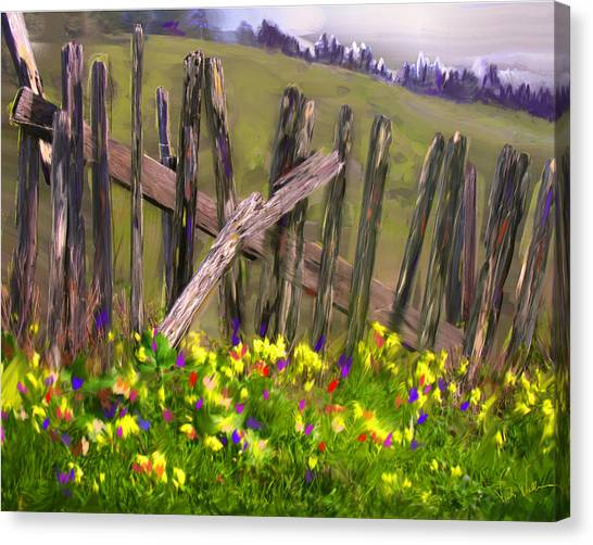 Painted Fence Canvas Print by Vicki Tomatis