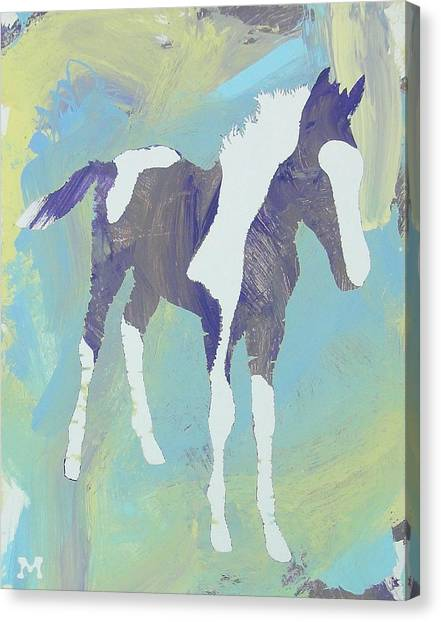 Painted Foal Canvas Print