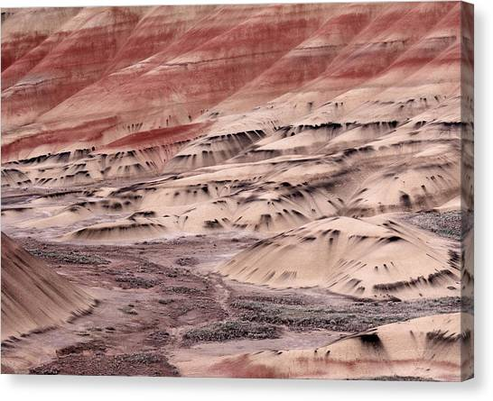 Ashes Canvas Print - Painted Hills 2b by Leland D Howard