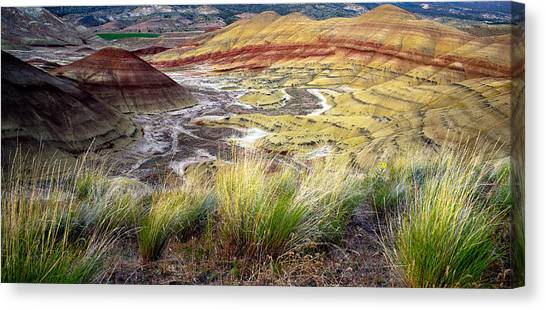 Painted Hills From Overlook Trail Canvas Print by Adele Buttolph
