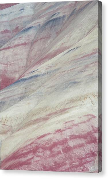 Ashes Canvas Print - Painted Hills Textures 3 by Leland D Howard