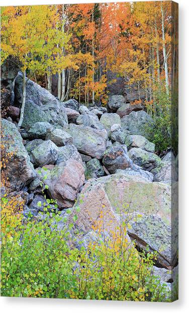 Painted Rocks Canvas Print