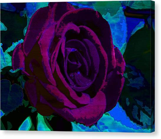 Painted Rose Canvas Print