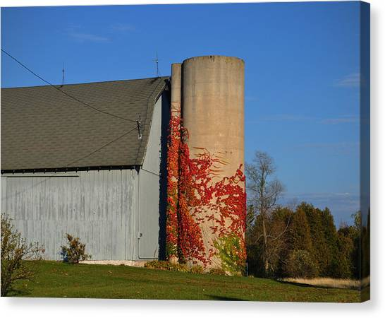 Painted Silo Canvas Print