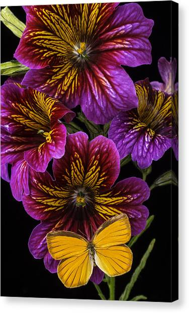 Tongue Canvas Print - Painted Tongue With Orange Butterfly by Garry Gay