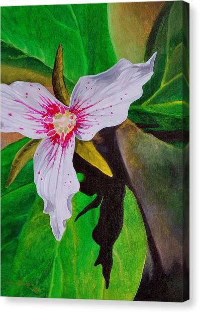 Painted Trillium Canvas Print