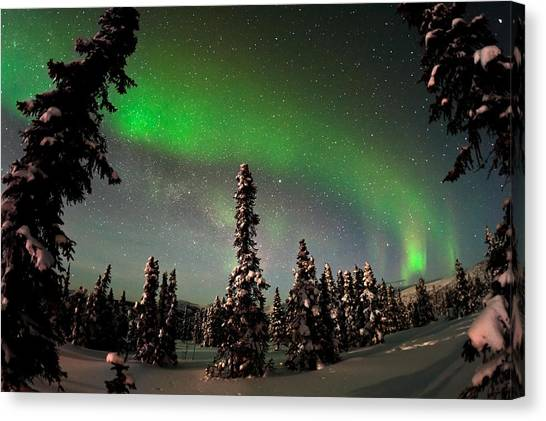 All Star Canvas Print - Painting The Sky With The Northern Lights by Mike Berenson