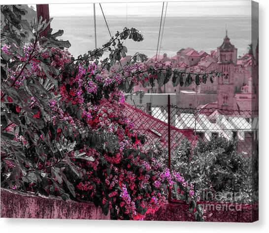 Painting The Town Red Canvas Print