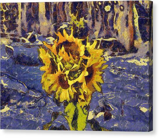 Painting With Five Sunflowers Canvas Print