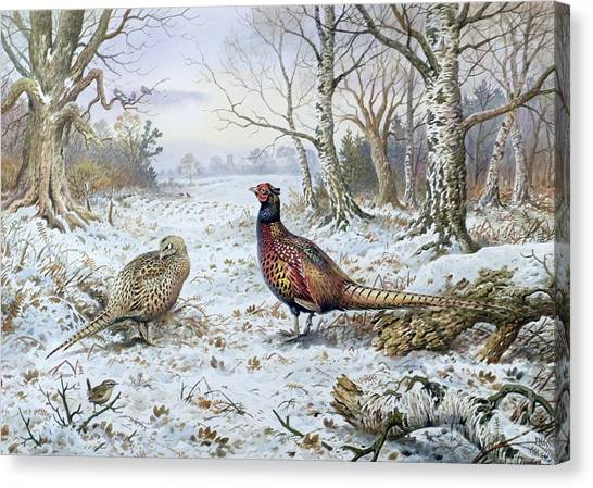 Trees In Snow Canvas Print - Pair Of Pheasants With A Wren by Carl Donner