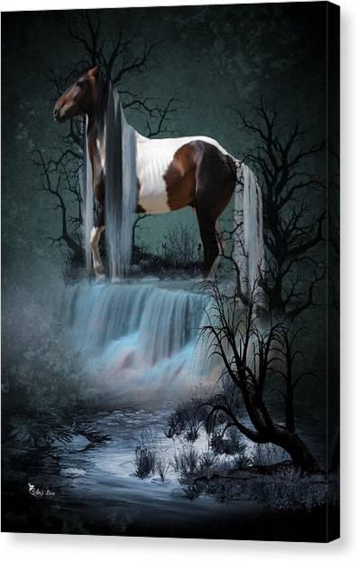 Pinto  Falls Canvas Print