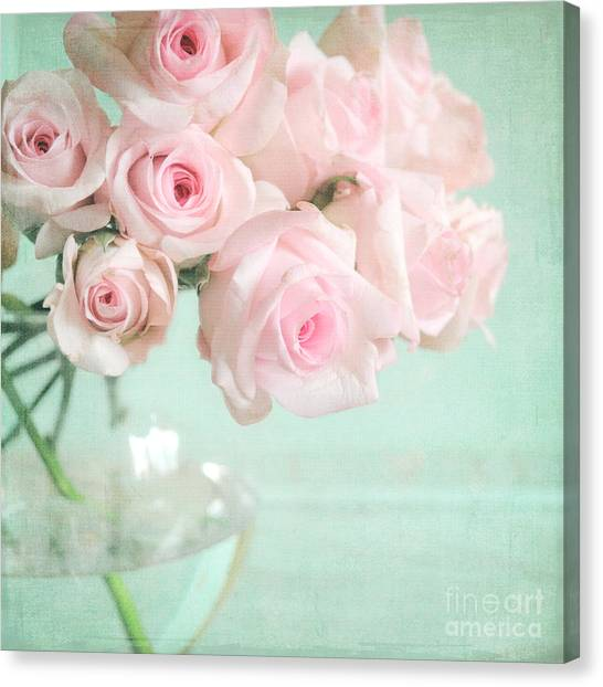 Pale Pink Roses Canvas Print