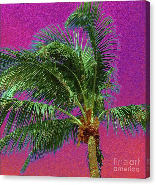 Palm 1012 Canvas Print