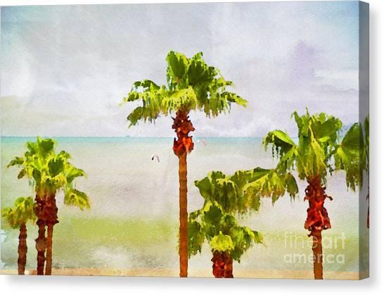 Palm Breeze Canvas Print