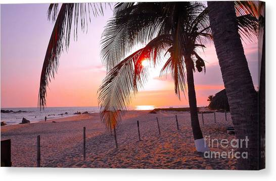 Palm Collection - Sunset Canvas Print
