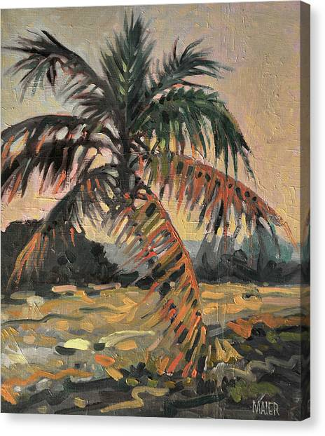 Palm Trees Canvas Print - Palm by Donald Maier