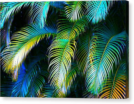 Aerosmith Canvas Print - Palm Leaves In Blue by Karon Melillo DeVega